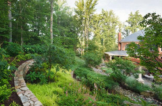 Image Credit: SURROUNDS Landscape Architecture + Construction